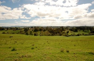 Lot 1 OLD CORAMBA ROAD, Dorrigo NSW 2453