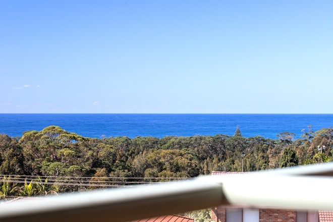 Picture of 38 Bushland Avenue, MOLLYMOOK BEACH NSW 2539