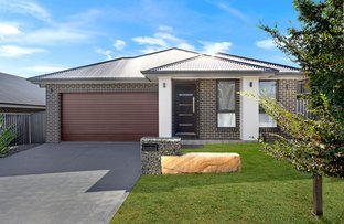 Picture of 11 Long Bush Rise, Cobbitty NSW 2570