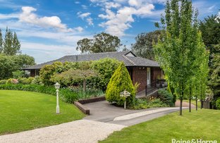Picture of 20 Spring Gully Road, Crafers SA 5152