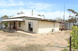 Picture of 67 Pine Hut Road, Bumbunga SA 5520