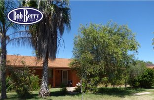 Picture of 43 Fairview Street, Dubbo NSW 2830
