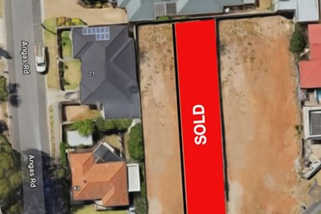 Picture of 45A Koongarra Avenue, MAGILL SA 5072