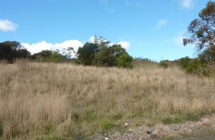 Lot 1 Tasman Highway, Orielton TAS 7172