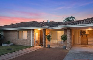 Picture of 3/116 Alexander Road, Rivervale WA 6103