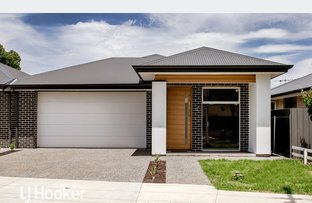 Picture of 15A Lucerne Grove, Findon SA 5023