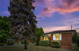 Picture of 12 Campdale Place, Orange NSW 2800