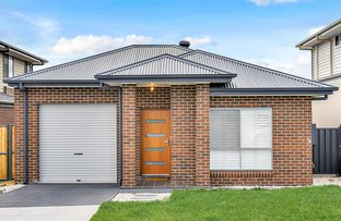 Picture of 41 Tinline Street, Box Hill NSW 2765