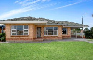 Picture of 19 Dillon Avenue, Flinders Park SA 5025