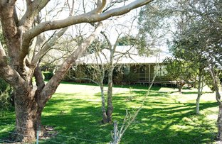 Picture of 490 Ogradys Ridge Road, Foster North VIC 3960