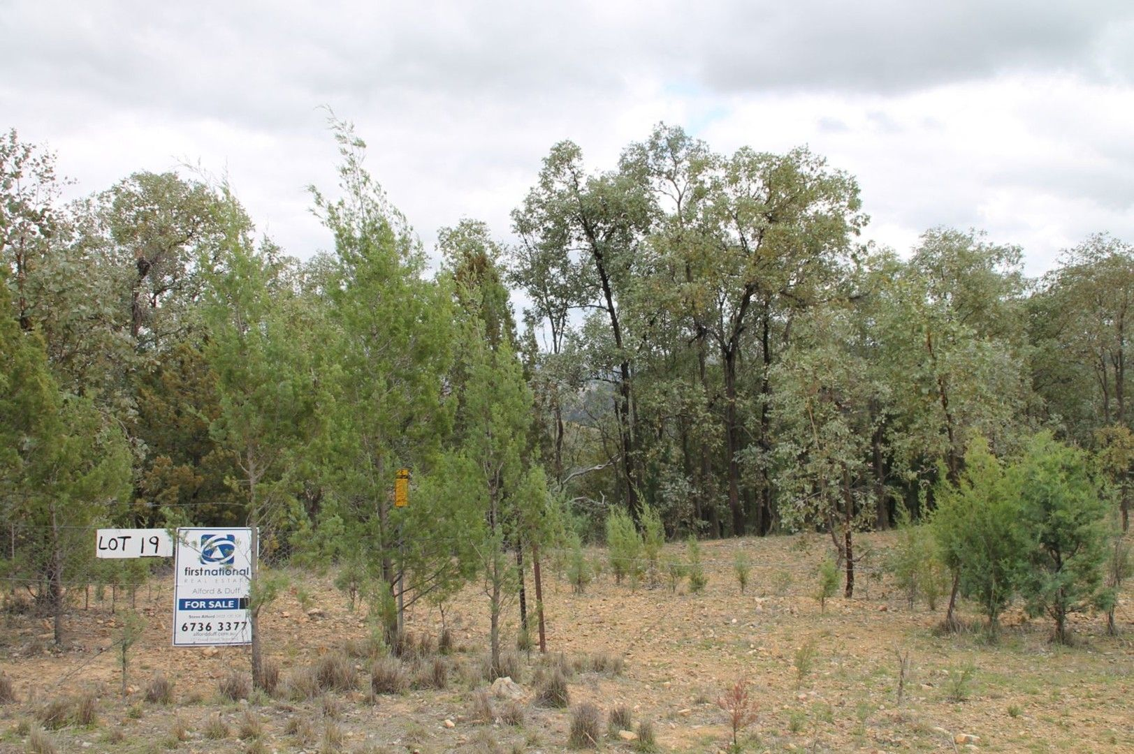 Lot 19 Mountain Creek Road, Tenterfield NSW 2372, Image 0