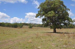 """Picture of """"Tara"""" Dales Creek Rd, Kars Springs via, Scone NSW 2337"""