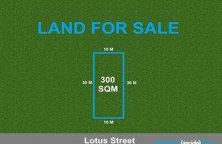 12 Lotus Street, Marsden Park NSW 2765