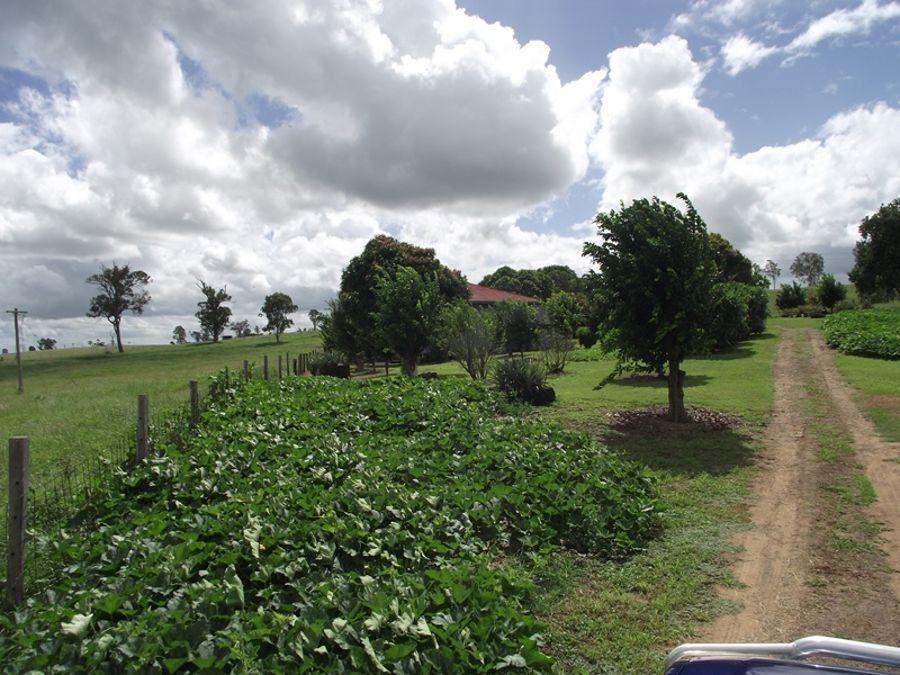 Woolooga QLD 4570, Image 0