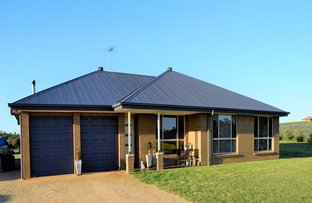Picture of 89 Lynchs Lane, Grenfell NSW 2810