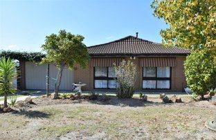 Picture of 14 Alison Court, Bairnsdale VIC 3875