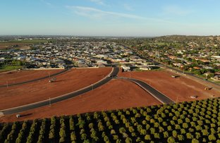 Picture of Lot 706 Riverina Grove Estate, Griffith NSW 2680