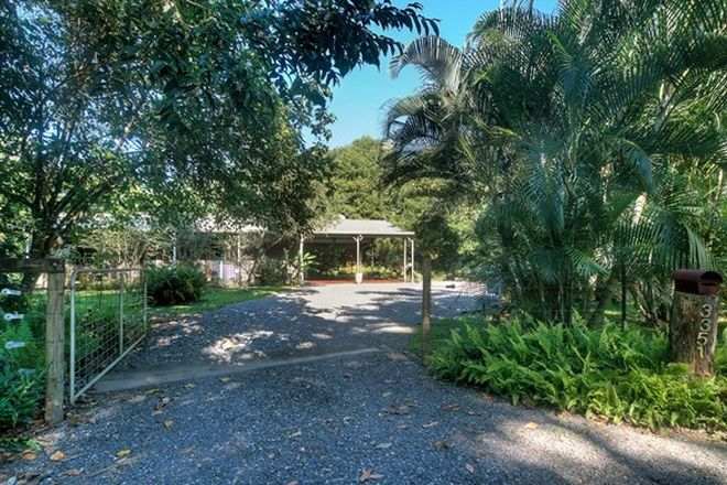 Picture of 3351 Mossman Daintree Road, DAINTREE QLD 4873