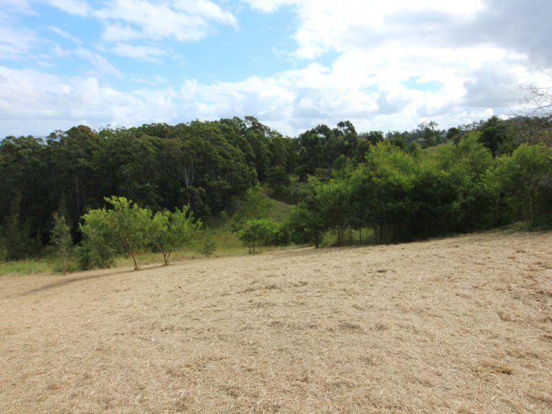 25 Lorikeet Way, Tallwoods Village NSW 2430, Image 0
