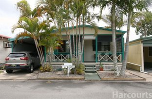 Picture of 145/126 Cotterill Ave, Bongaree QLD 4507