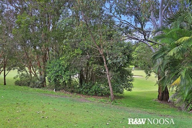 Picture of 321/61 Noosa Springs Drive, NOOSA SPRINGS QLD 4567