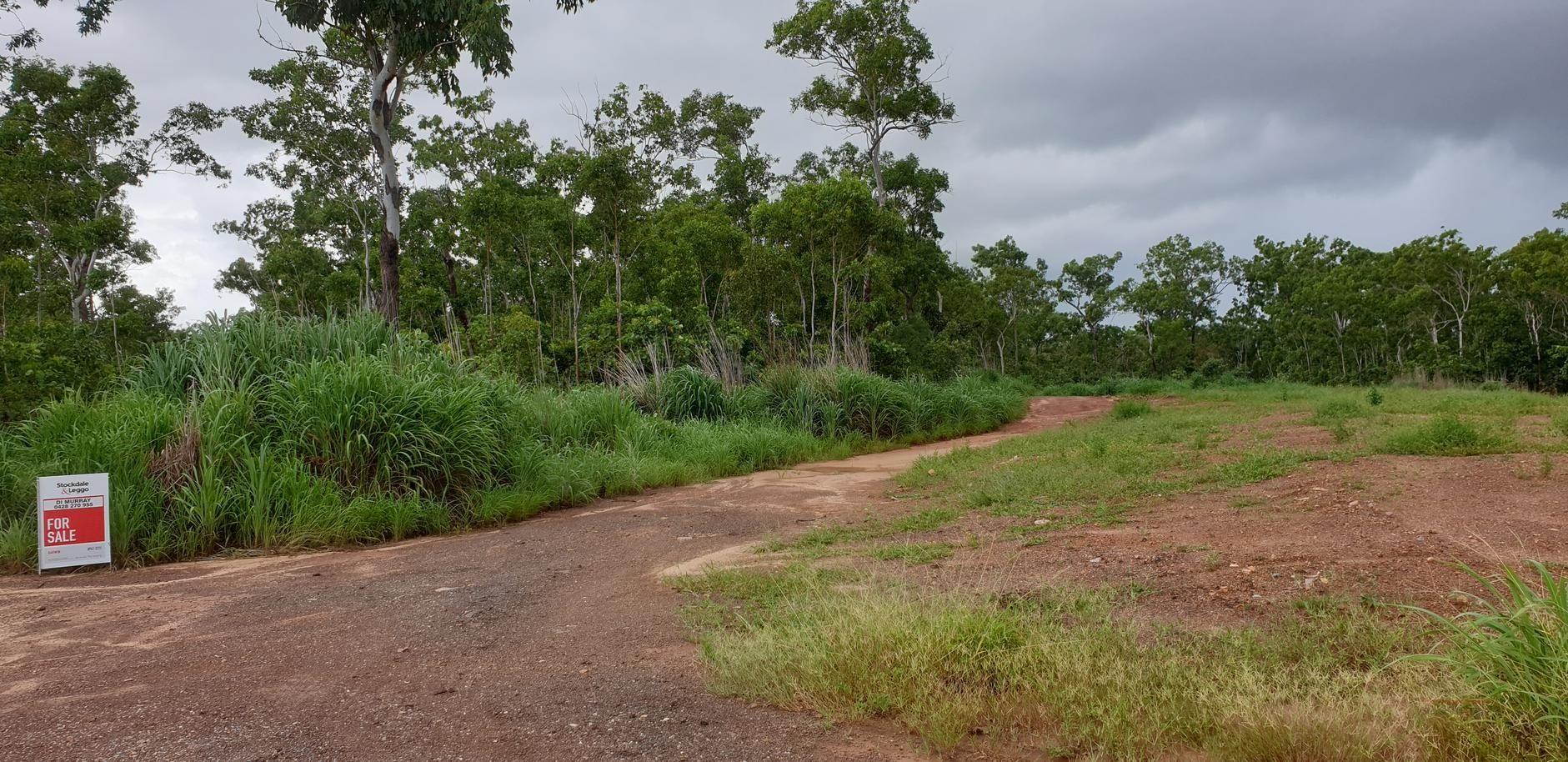 117,  121,  125 Eucalyptus, Herbert NT 0836, Image 1