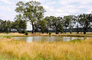 Picture of Chiltern Valley Road, Chiltern Valley VIC 3683