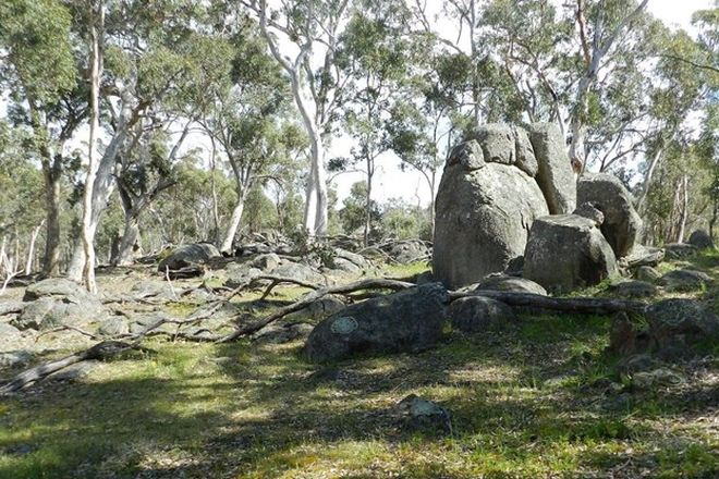 Picture of Lot 100 Trigwell Road, Trigwell, BOYUP BROOK WA 6244