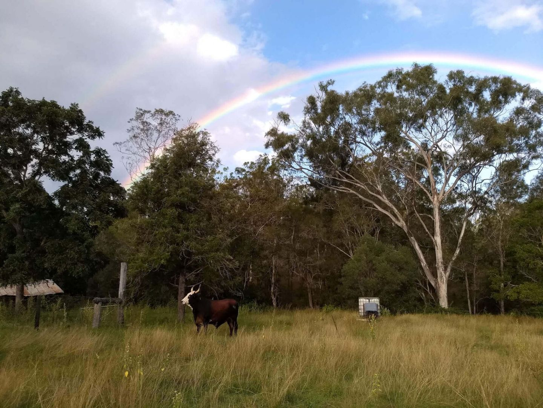 Boyne Valley QLD 4680, Image 1