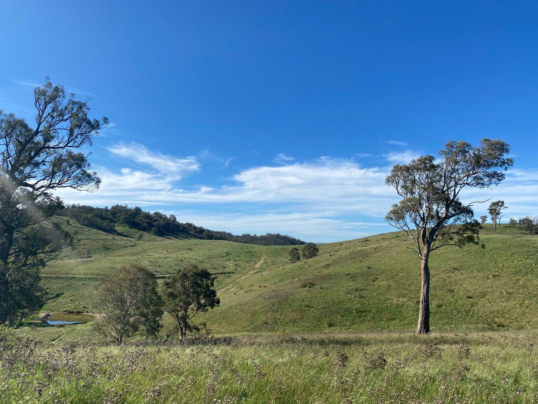 Lot 44 via Hanworth Road, Bannaby via Taralga, Bannaby NSW 2580, Image 0