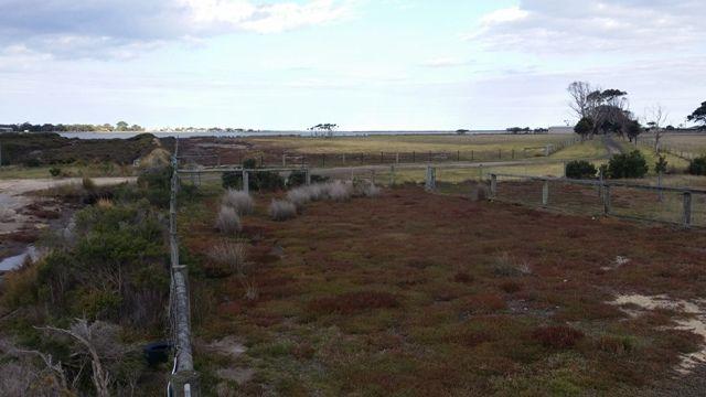 60 Wills Road, Port Albert VIC 3971, Image 2