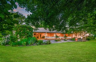 Picture of 'Manaree' 5448 New England Hwy, Blandford via, Scone NSW 2337