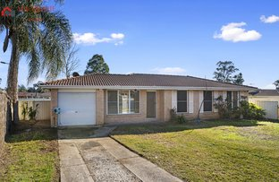 Picture of 12 Wraysbury Place, Oakhurst NSW 2761