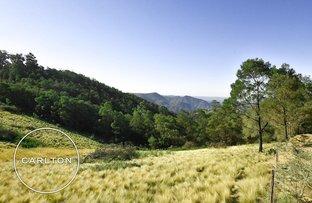 Picture of 130 Obriens Road, Bullio NSW 2575