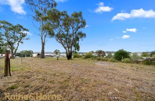 Picture of 8B Barton Avenue, Triabunna TAS 7190