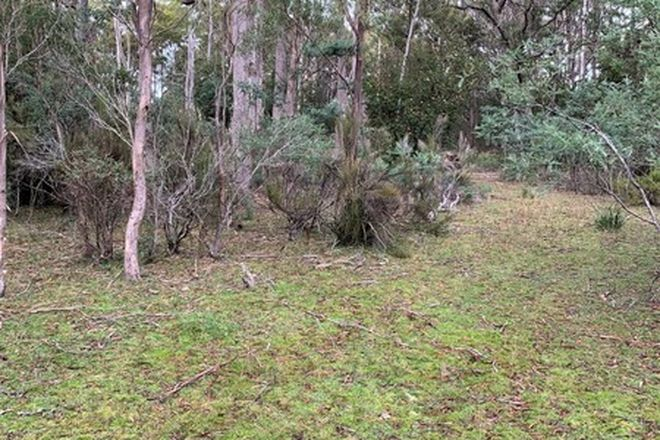 Picture of Lot 4 Elephant Pass Road, GRAY TAS 7215