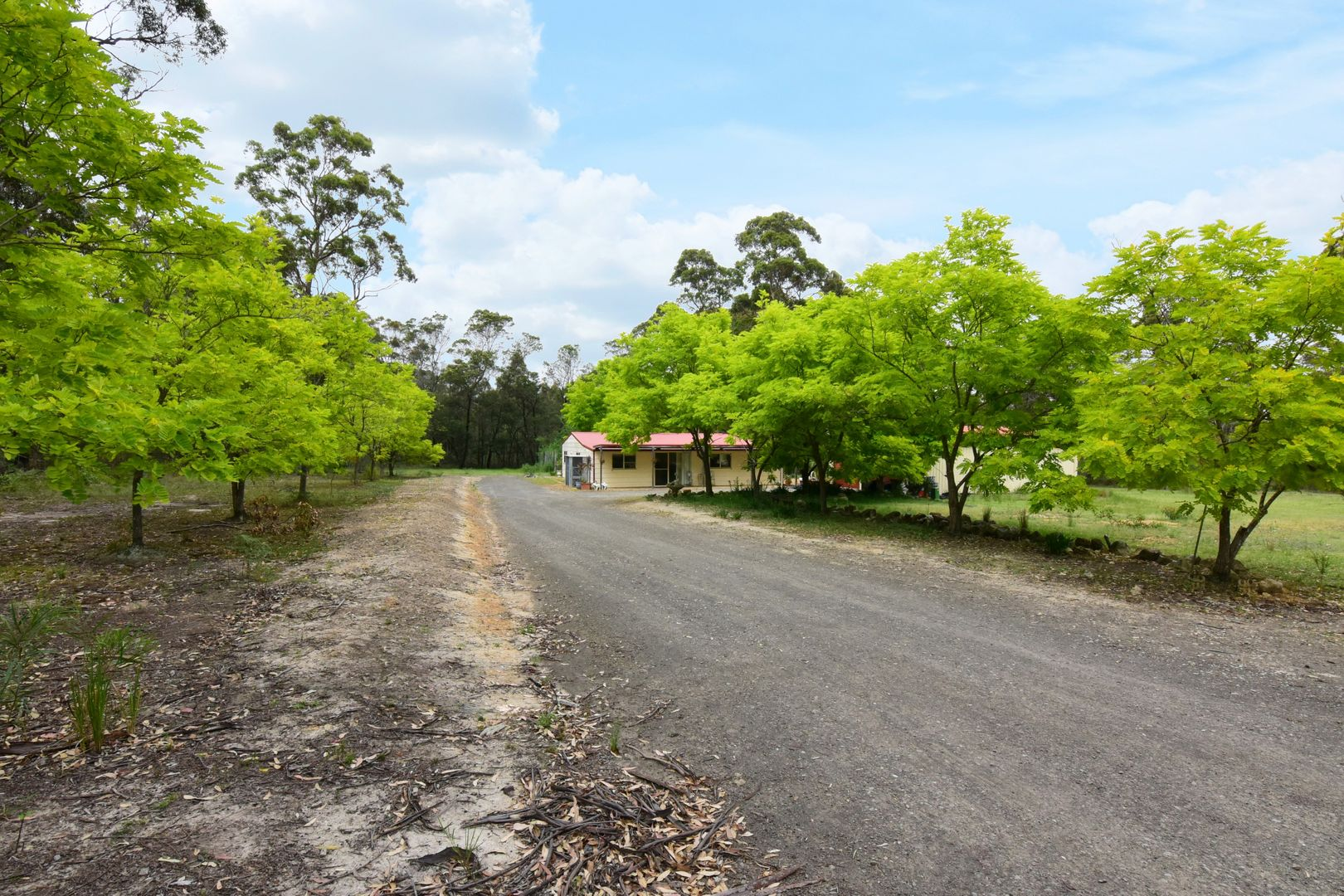 Lot 55 James Farmer Grove, Woollamia NSW 2540, Image 1