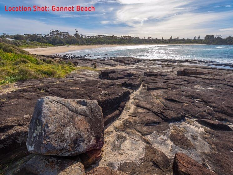 Bawley Point NSW 2539, Image 1