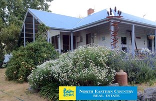 Picture of 237 Long Gully Road, Violet Town VIC 3669