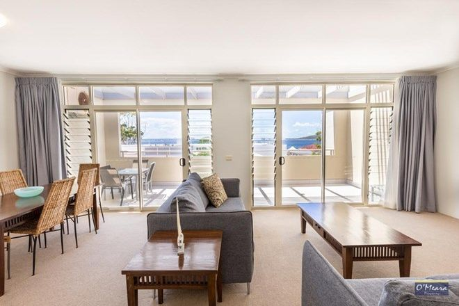 Picture of 62/43-45 Shoal Bay Road, SHOAL BAY NSW 2315