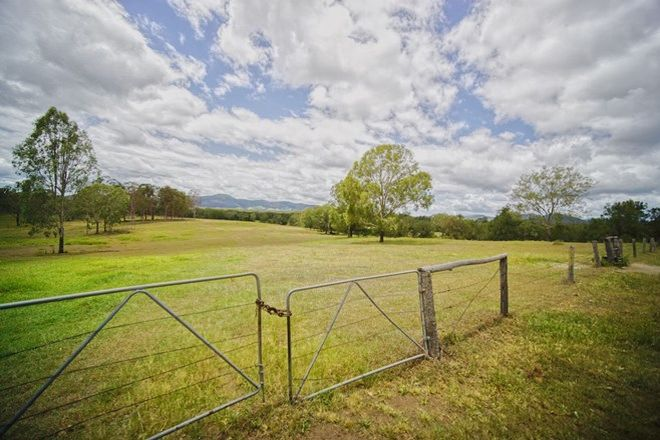 Picture of 477 Upper Widgee Road, WIDGEE QLD 4570