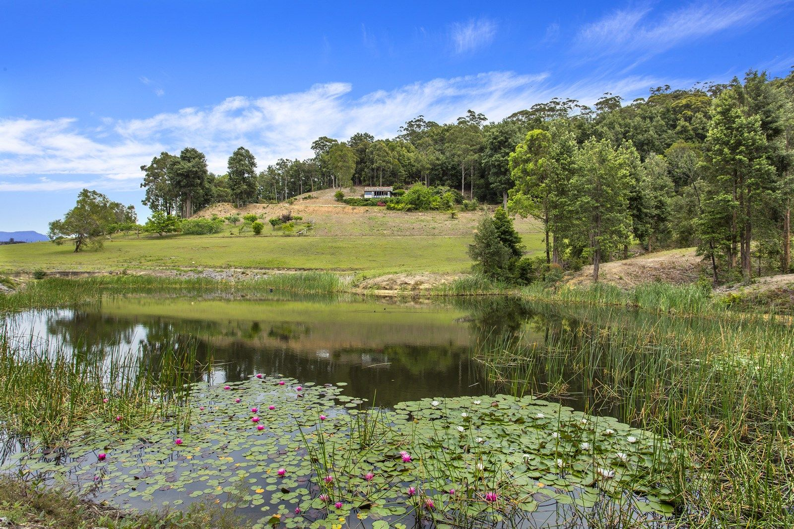 480 Jacks Corner Road, Kangaroo Valley NSW 2577, Image 2