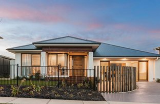 11 Dot Butler Street, Wright ACT 2611