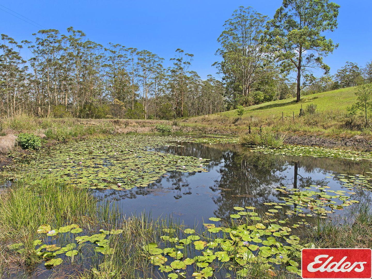1186 PIPERS CREEK ROAD, Dondingalong NSW 2440, Image 2