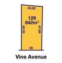 42 Vine Avenue, Horsham VIC 3400, Image 1