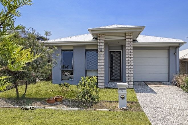 Picture of 14 Mount Mee, PARK RIDGE QLD 4125