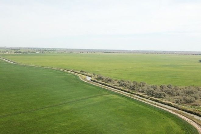 """Picture of """"Boree Downs"""" 3848 Bringagee Road, TABBITA NSW 2652"""