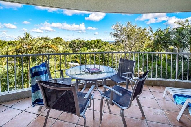 Picture of 11/26 Noosa Drive, NOOSA HEADS QLD 4567
