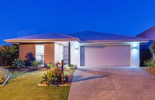 Picture of 17 Hoop Pine Circuit, Coomera QLD 4209