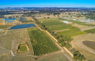 Picture of 130 Fryes Road, Elphinstone VIC 3448